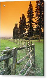 Lanai, City View Acrylic Print by Ron Dahlquist - Printscapes