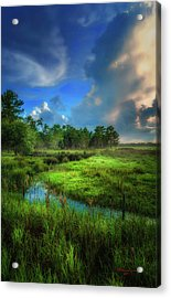 Land Of Milk And Honey Acrylic Print by Marvin Spates