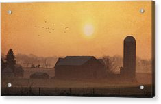 Land Of The Amish Acrylic Print by Lori Deiter
