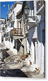 Acrylic Print featuring the photograph Street In Capileira Puebla Blanca by Heiko Koehrer-Wagner