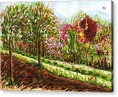 Landscape 2 Acrylic Print by Harsh Malik