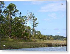 Acrylic Print featuring the photograph Landscape And Blue Sky by Carol  Bradley