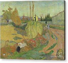 Landscape At Arles, 1888 Acrylic Print by Paul Gauguin