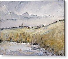 Landscape In Gray Acrylic Print by Carolyn Doe