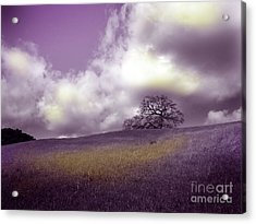 Landscape In Purple And Gold Acrylic Print by Laura Iverson