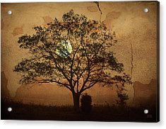 Landscape On Adobe Wall Acrylic Print by Dave Gordon