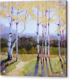 Landscape Series 2 Acrylic Print by Laura Lee Zanghetti