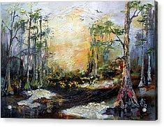 Landscape Wetland Suwanee River Black Water Acrylic Print