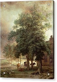 Landscape With Carriage Or House Beyond The Trees Acrylic Print by Paulus Potter