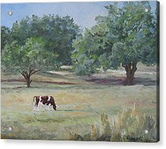 Landscape With Longhorn Acrylic Print