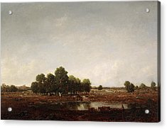 Landscape With Marsh Acrylic Print by Theodore Rousseau