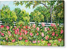 Landscape With Roses Fence Acrylic Print