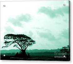 Landscape With Tree Acrylic Print by Barbara Marcus