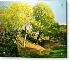 Landscape With Trees In Wales Acrylic Print by Harry Robertson