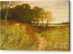 Landscape With Wild Flowers And Rabbits Acrylic Print