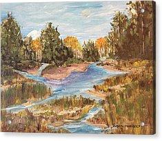 Landscape_1 Acrylic Print