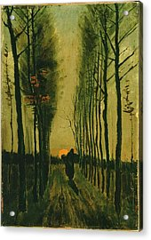 Acrylic Print featuring the painting Lane Of Poplars At Sunset by Van Gogh