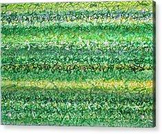 Language Of Grass Acrylic Print by Jason Messinger