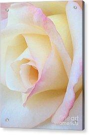 Language Of Love Acrylic Print