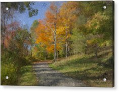 Langwater Path In October Acrylic Print