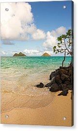 Lanikai Beach 1 - Oahu Hawaii Acrylic Print