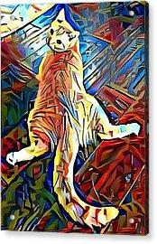Lanny- Cerebellar Hypoplasia Cat Art Acrylic Print by Deborah Martin
