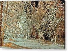 Laplandia Acrylic Print by Boris Shekhirev