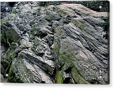 Acrylic Print featuring the photograph Large Rock At Central Park by Sandy Moulder
