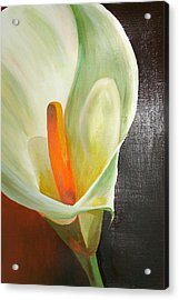 Large White Calla Acrylic Print by Tracey Harrington-Simpson