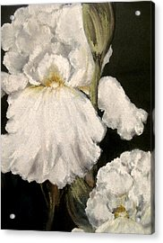 Large White Iris Acrylic Print by Carol Sweetwood