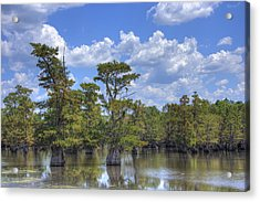 Largemouth Country Acrylic Print by Barry Jones