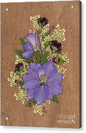 Larkspur And Queen-ann's-lace Pressed Flower Arrangement Acrylic Print