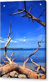 Las Cabezas Bay Acrylic Print by Thomas R Fletcher