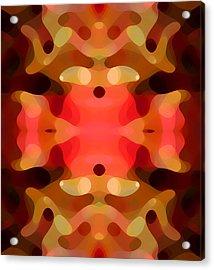Las Tunas Abstract Pattern Acrylic Print by Amy Vangsgard