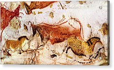 Lascaux Cow And Horses Acrylic Print