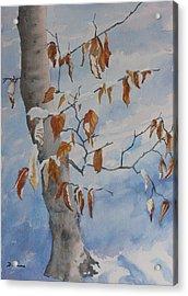 Last Leaves Acrylic Print by Debbie Homewood