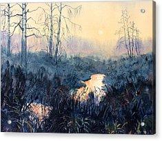 Last Light On Skipwith Marshes Acrylic Print