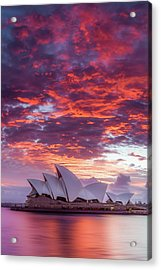 Last Moment In Sydney Acrylic Print