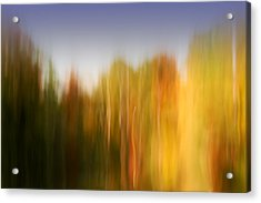 Last November At Duke Acrylic Print by Margaret Denny