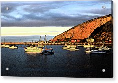 Acrylic Print featuring the photograph Last Rays At The Bay by Nareeta Martin