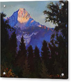 Last Rays Acrylic Print by Robert Bissett