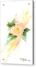Last Rose Of Summer Acrylic Print