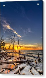 Last Stand Acrylic Print by Marvin Spates