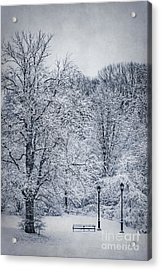 Last Winter's Dream Acrylic Print by Evelina Kremsdorf
