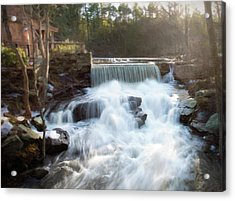 Acrylic Print featuring the photograph Late Afternoon At The Duck Pond by Sue Collura