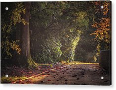 Late Afternoon Autumn Shower Acrylic Print by Chris Fletcher