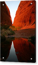 Late Afternoon Light And Reflections At Kata Tjuta In The Northern Territory Acrylic Print