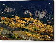 Acrylic Print featuring the photograph Late Afternoon Light On Aspen Groves At Silver Jack Colorado by Jetson Nguyen