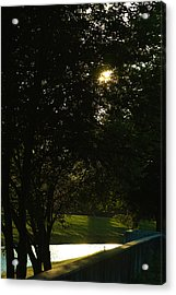 Late Afternoon Acrylic Print by Pit Hermann