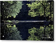 Late Afternoon Reflection Acrylic Print